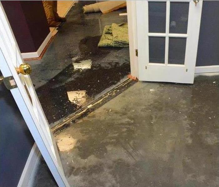 groundwater getting in under the French doors and ruining the carpeting and padding