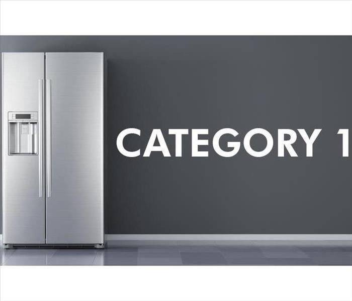 Picture of a refrigerator with the word Category on the side