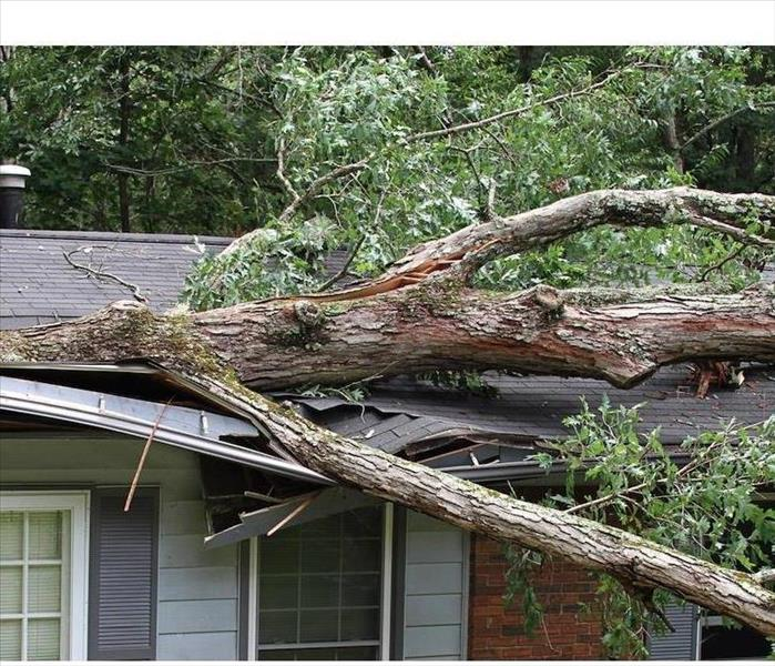 Commercial Tips for Preventing Wind Damage