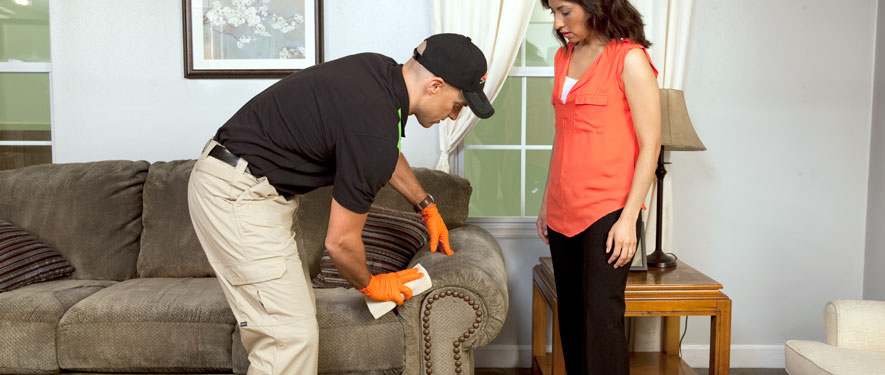 Atlanta, GA carpet upholstery cleaning